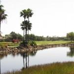 Heritage Palms